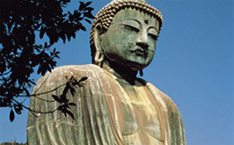 Haydi Japonyaya  haydijaponyaya.com